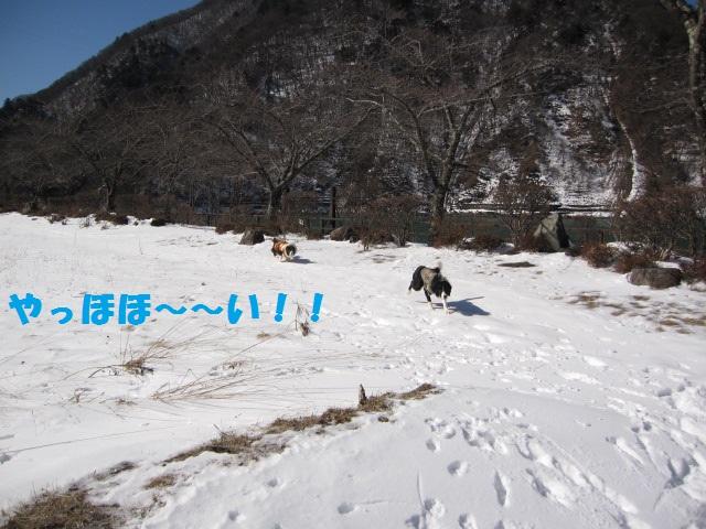 2012-02-11 雪遊び2012 006.jpg-1.jpg