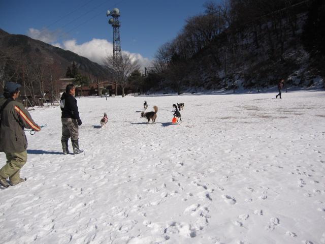 2012-02-11 雪遊び2012 008.JPG