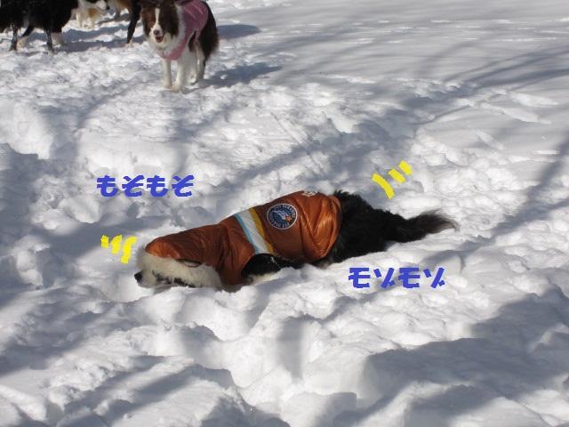 2012-02-11 雪遊び2012 033.jpg-1.jpg