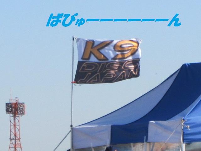 2012-02-18 K9東扇島1日目 002.jpg-1.jpg