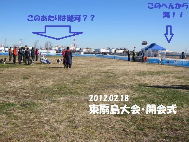 2012-02-18 K9東扇島1日目 003.jpg-1.jpg
