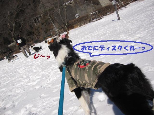 2012-02-11 雪遊び2012 011.jpg-1.jpg
